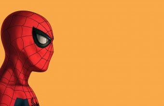 Spiderman Wallpaper 41 1920x1080 340x220