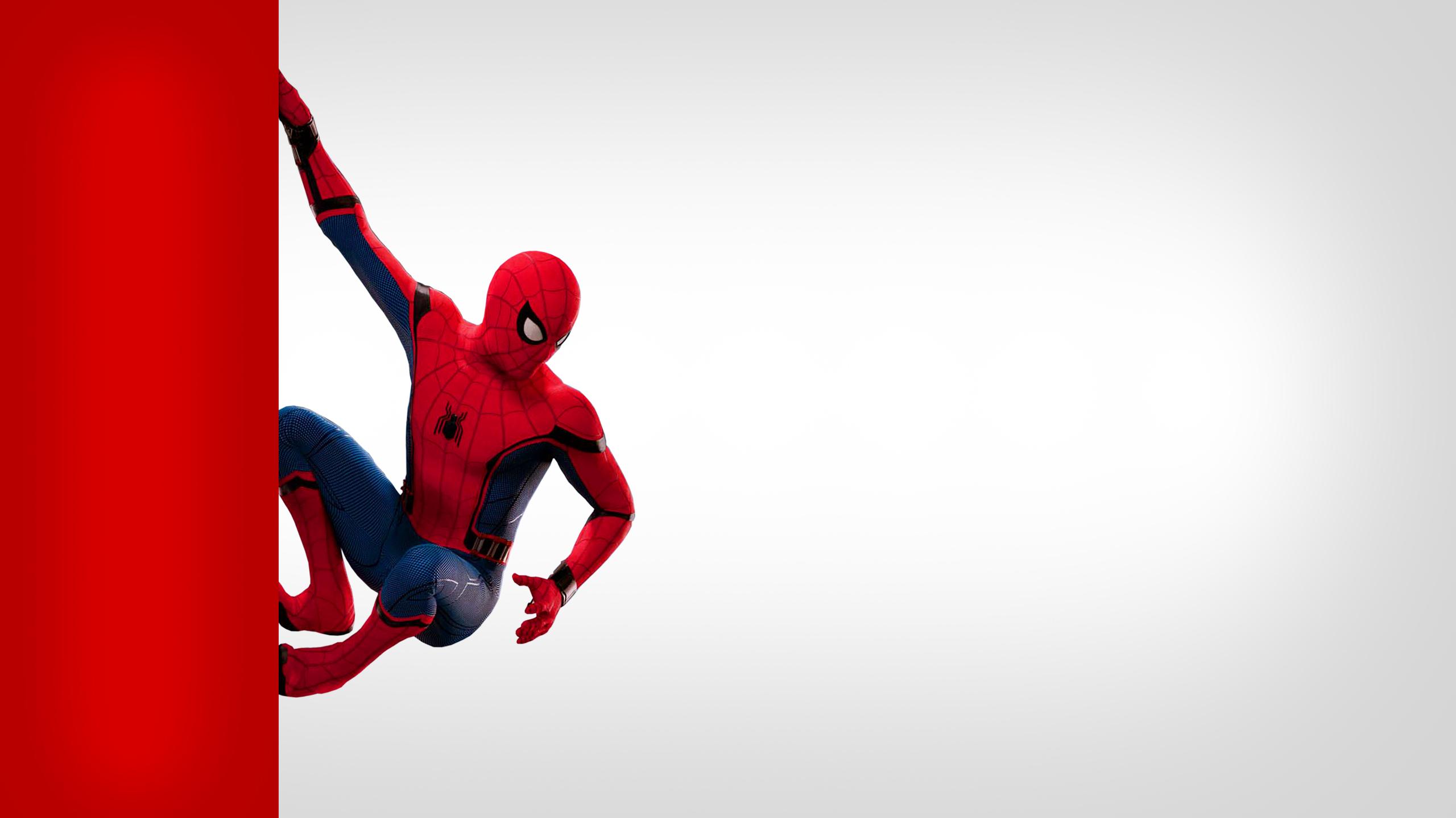 spiderman wallpaper 70 - [2560x1440]