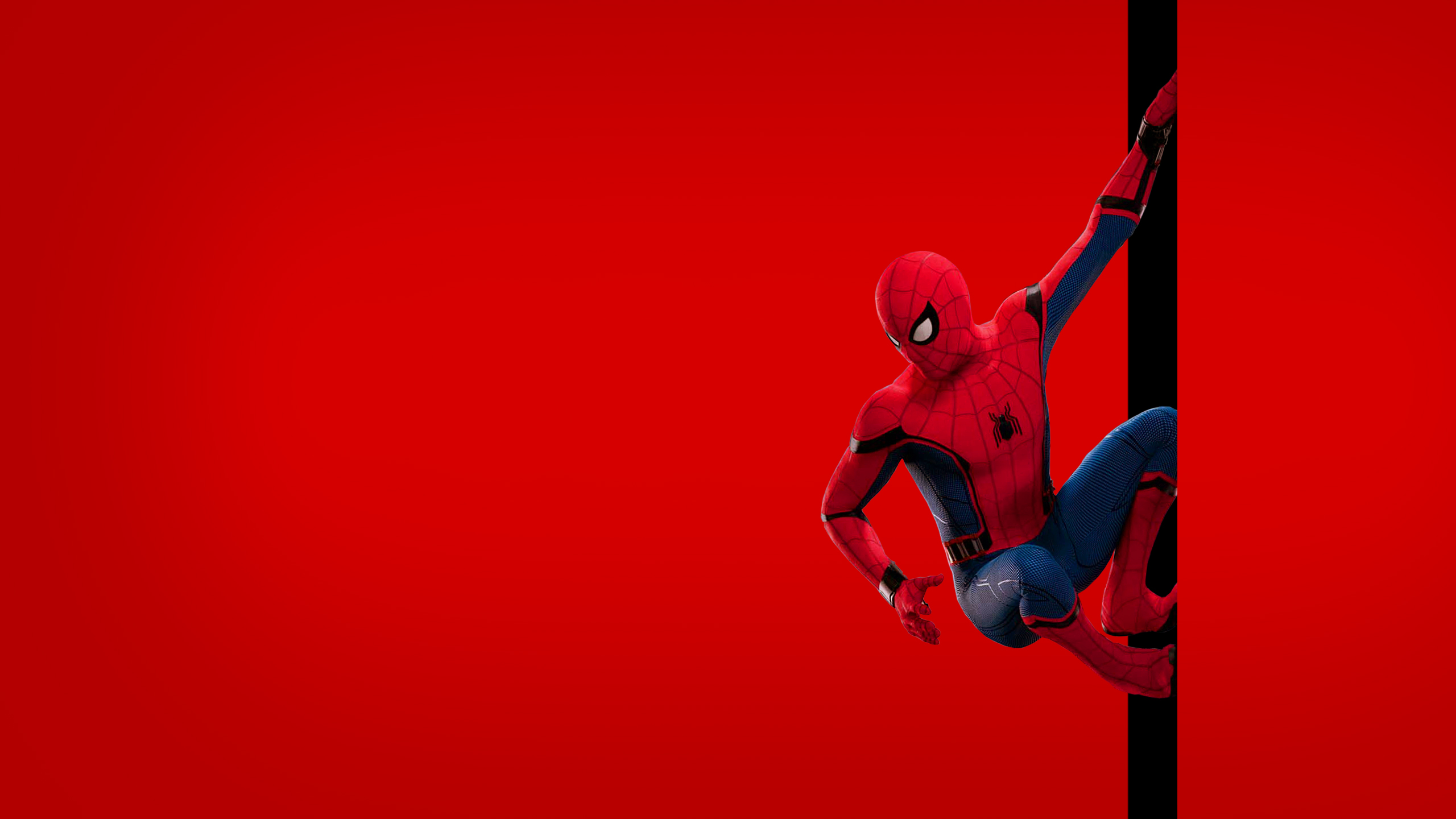 Spiderman Wallpaper 71 - 2560x1440