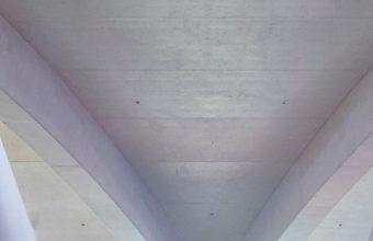 1242x2688 Wallpaper 050 340x220