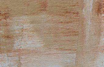 1242x2688 Wallpaper 064 340x220