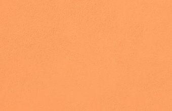 1242x2688 Wallpaper 403 340x220