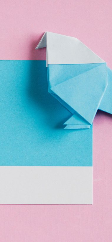 828x1792 Wallpaper 087 380x822
