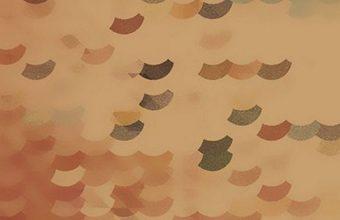 828x1792 Wallpaper 240 340x220