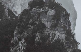 1440x3120 Wallpaper 089 340x220