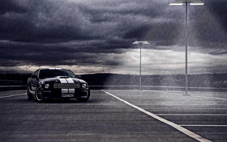 Mustang Wallpaper 10 1920x1200 768x480
