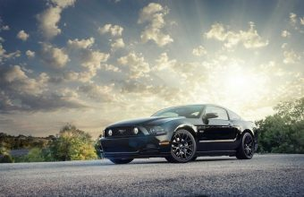 Mustang Wallpaper 38 1920x1200 340x220