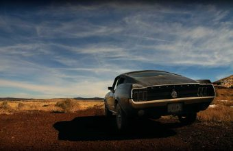 Mustang Wallpaper 47 1280x1024 340x220