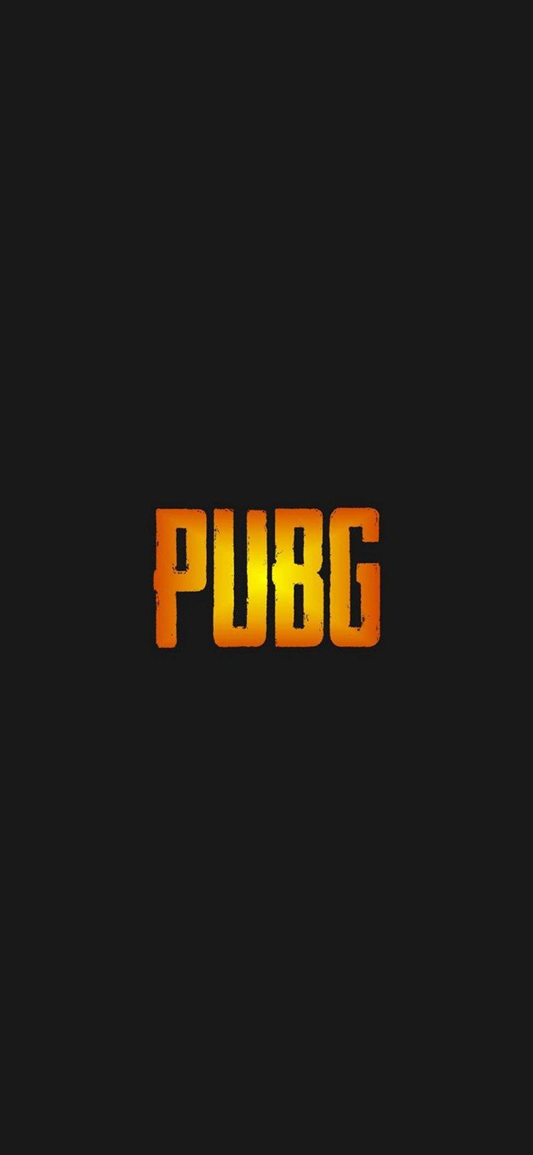 PUBG Phone Wallpaper 26 1080x2340 768x1664