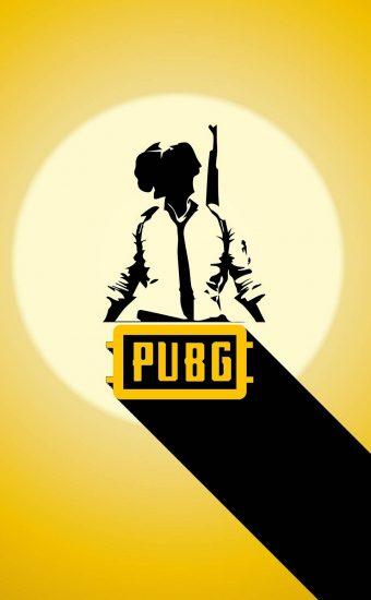 PUBG Phone Wallpaper 36 1080x2340 340x550