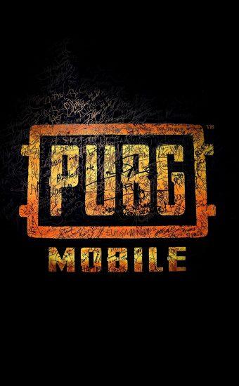 PUBG Phone Wallpaper 41 1080x2340 340x550