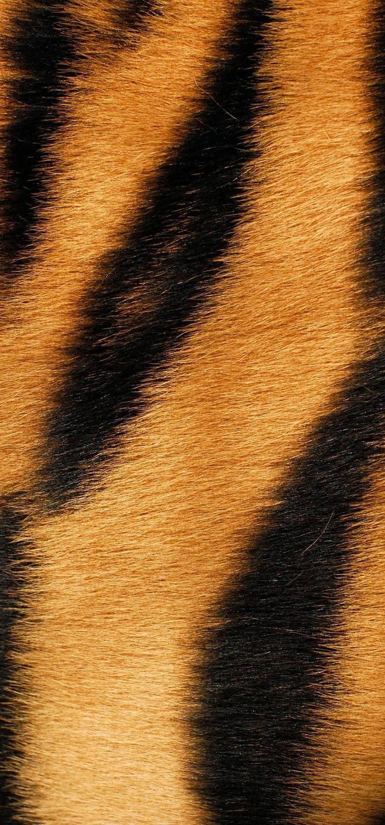 1080x2310 Wallpaper 119 768x1643