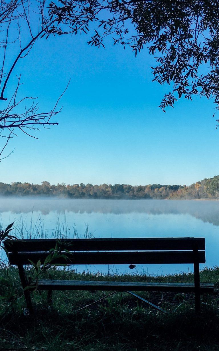 Bench Lake Landscape Trees 800x1280 768x1229