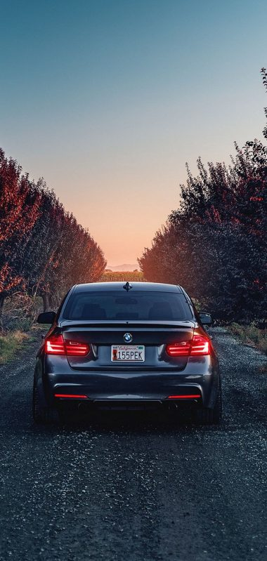 Bmw F80 335i Rear View 1080x2270 380x799