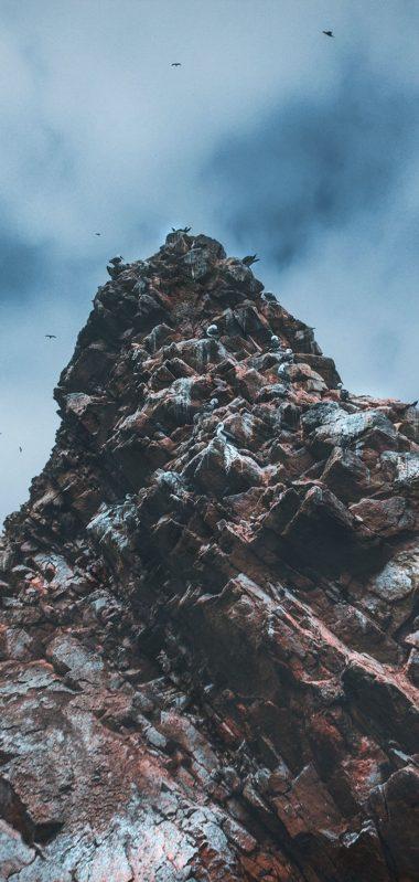 Cliffs Rocks Birds 125763 800x1280