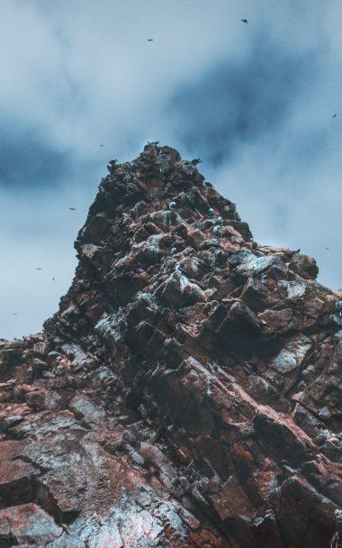 Cliffs Rocks Birds 125763 800x1280 800x1280 380x608