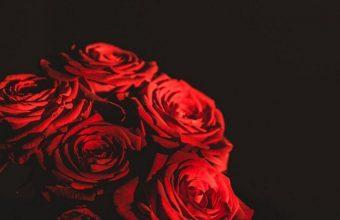 Dark Red Flowers Bouquet 800x1280 340x220