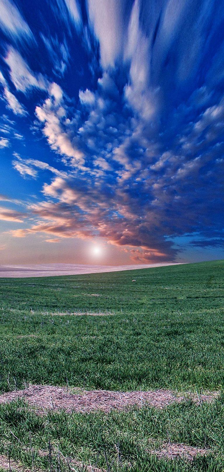 Field Horizon Sky Evening Grass 1080x2270 768x1614