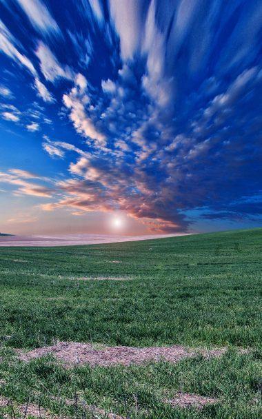 Field Horizon Sky Evening Grass 800x1280 380x608