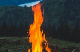 FireWood Campfire Mountain 1080x2270 340x220