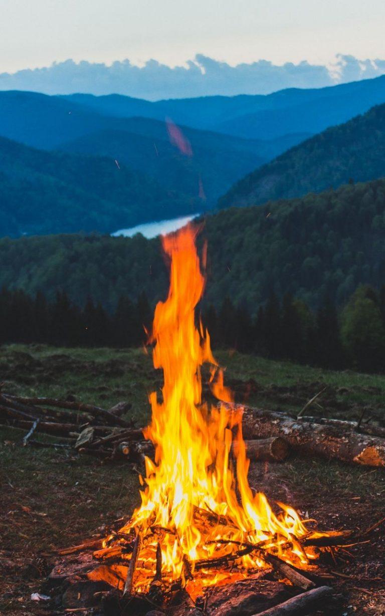 FireWood Campfire Mountain 800x1280 768x1229