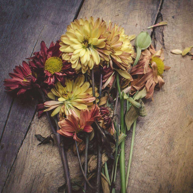 Flowers Herbarium Bouquet 2780x2780 768x768