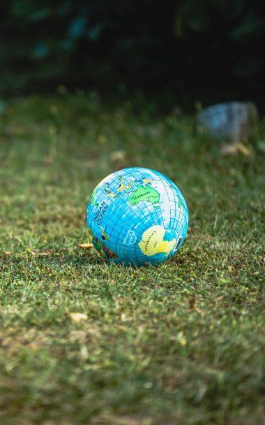 Globe Ball Grass 800x1280 380x608