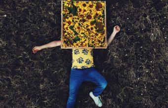 Lonely Field Flowers 800x1280 340x220