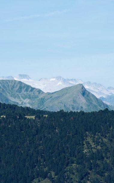 Mountain Range Mountains Trees Distance 800x1280 380x608