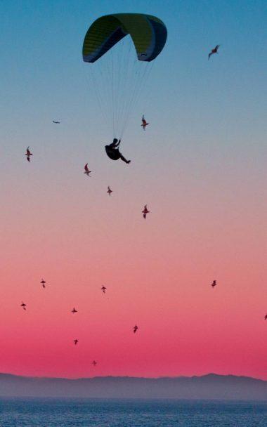 Parachute Flight Sports 800x1280 380x608