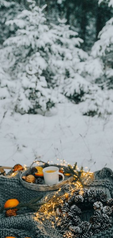 Picnic Comfort Snow 1080x2270 380x799