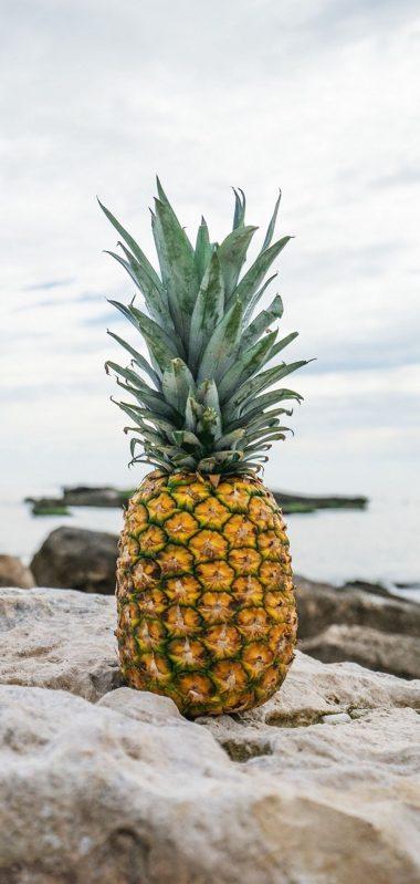 Pineapple Rocks Beach 1080x2270 380x799