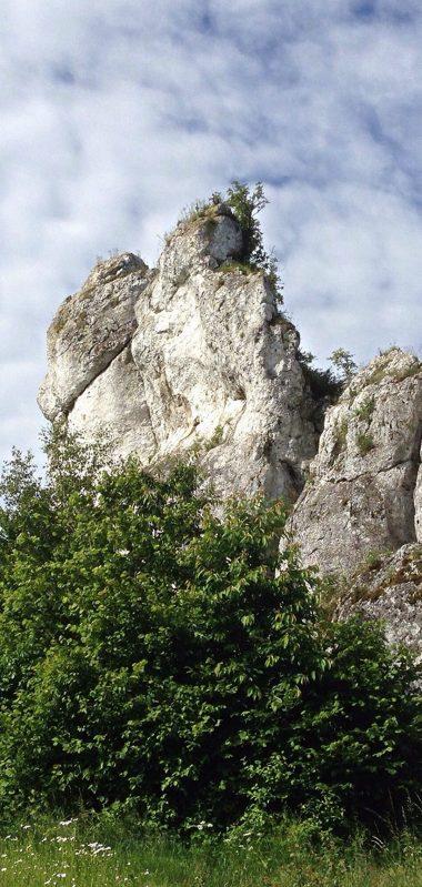 Polish Jurassic Highland Poland Limestone Stone 1080x2270 380x799