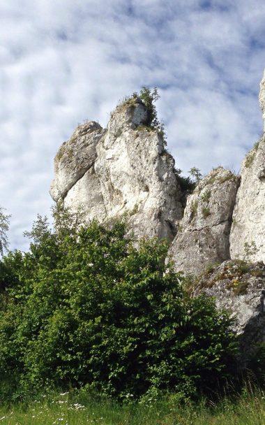 Polish Jurassic Highland Poland Limestone Stone 800x1280 380x608