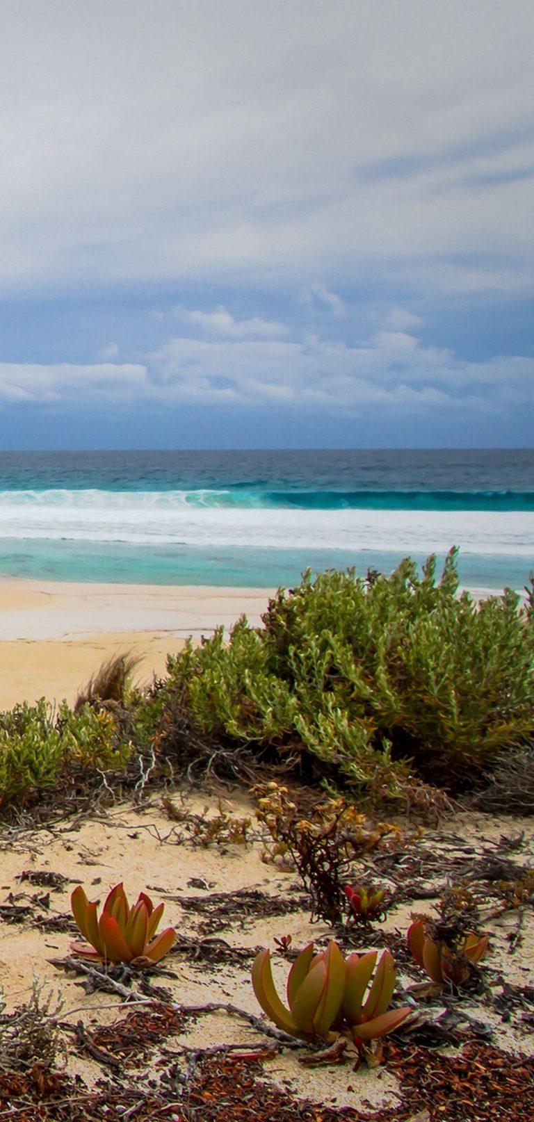 Sea Sand Beach Grass 1080x2270 768x1614