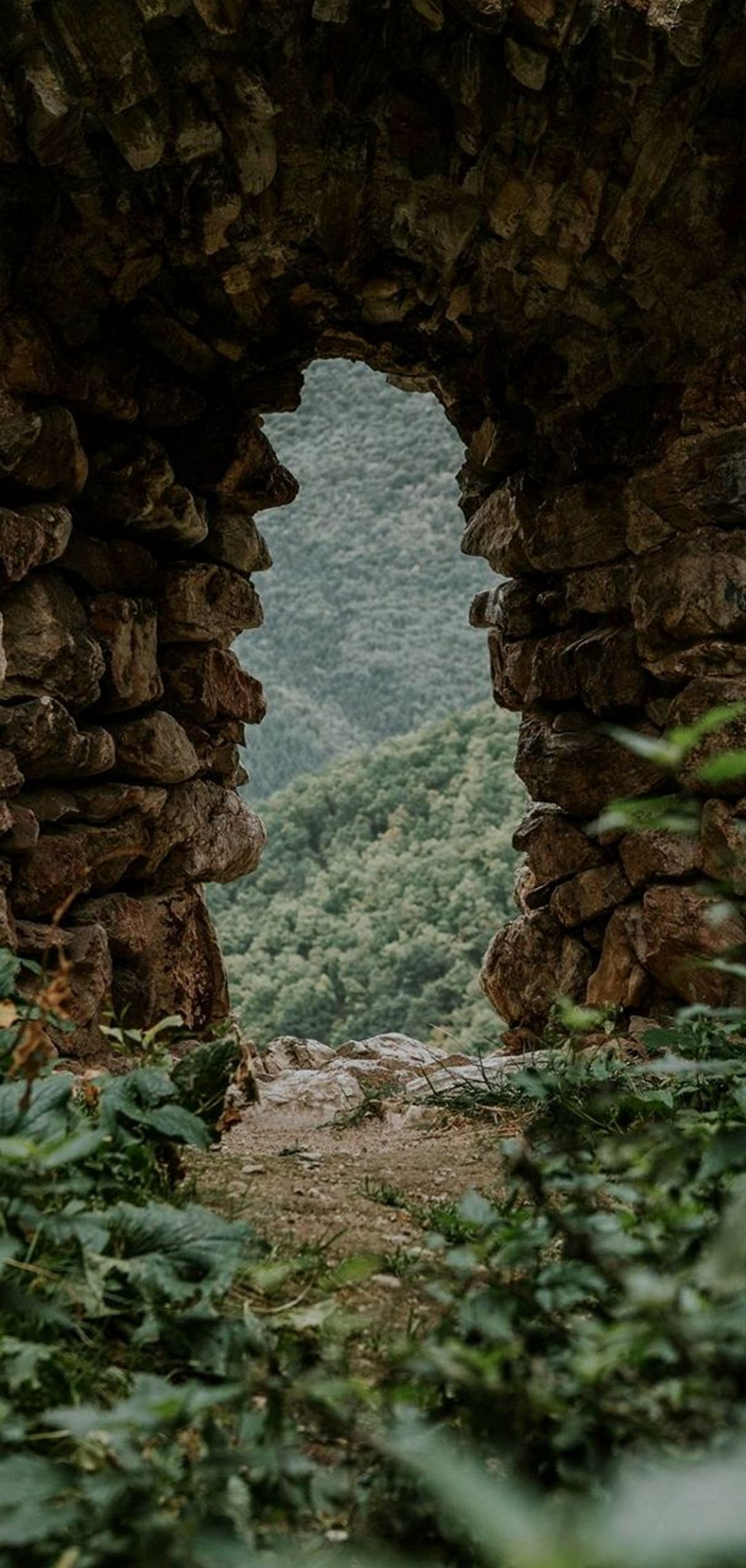 Stone Cave Grass Nature