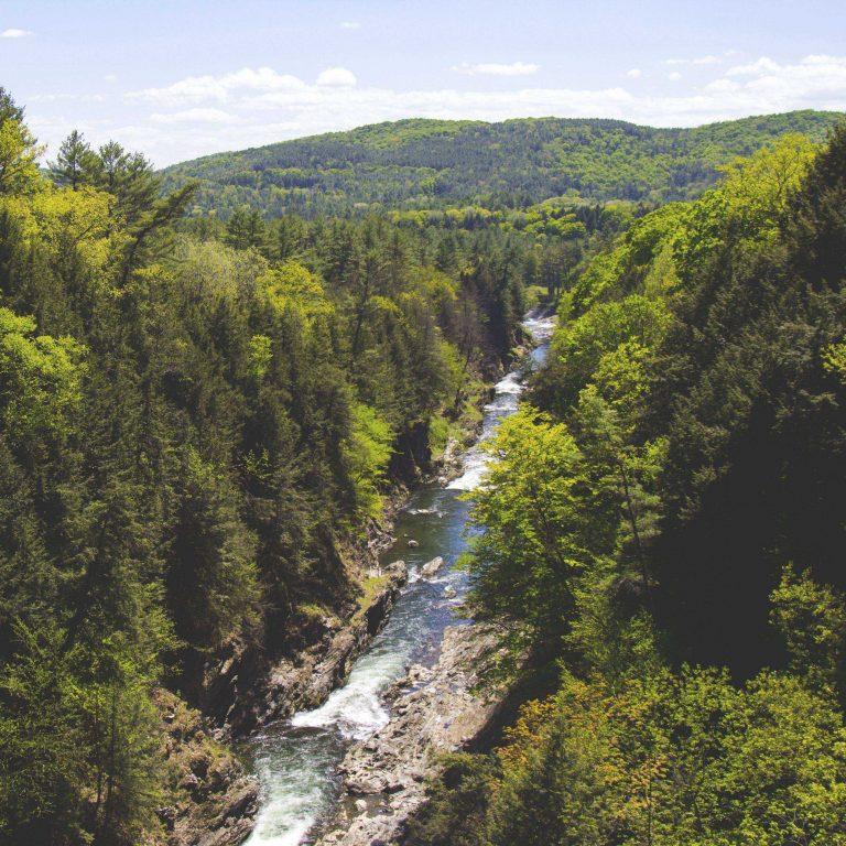 Trees Creek River Mountain 2780x2780 768x768