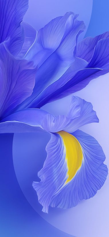 Xiaomi Mi 9 Stock Wallpapers Hd