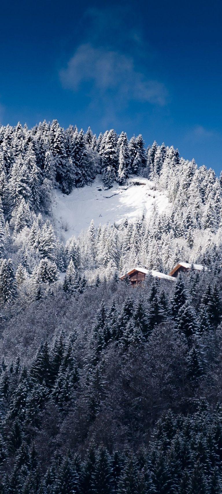 Alps Mountains Snow Trees 1080x2400 768x1707