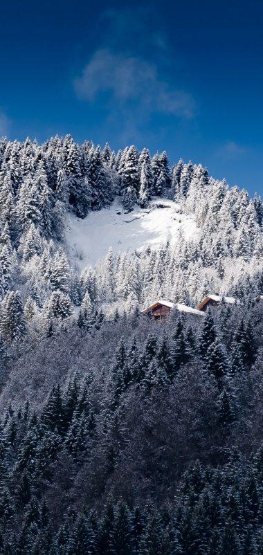 Alps Mountains Snow Trees Wallpaper 1440x3040 380x802
