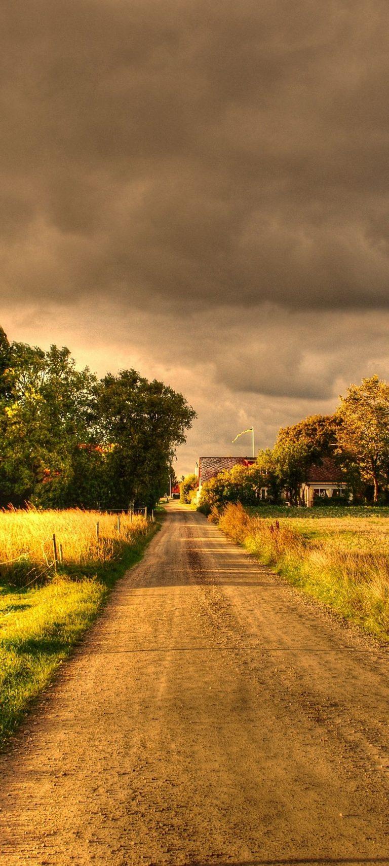 Autumn Field Road Landscape 1080x2400 768x1707