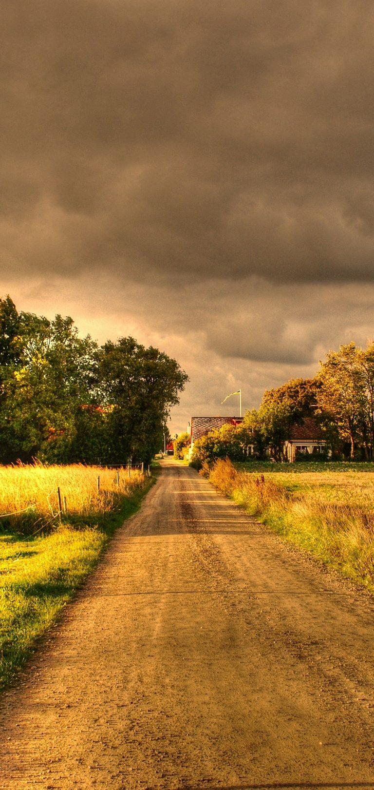 Autumn Field Road Landscape Wallpaper 1440x3040 768x1621