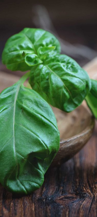 Basil Herbs Kitchen Utensils 1080x2400 380x844