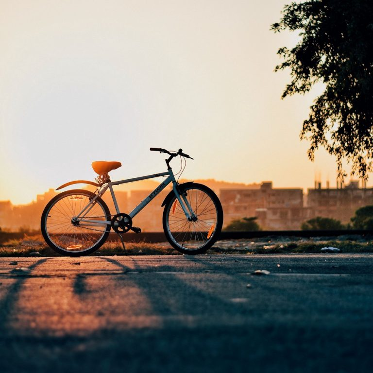 Bike Sunset Horizon Wallpaper 1024x1024 768x768