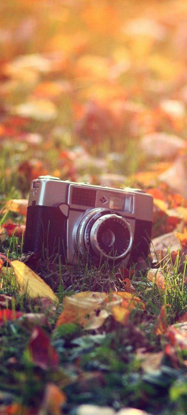 Camera Key Chain Mini Grass 1080x2400 380x844