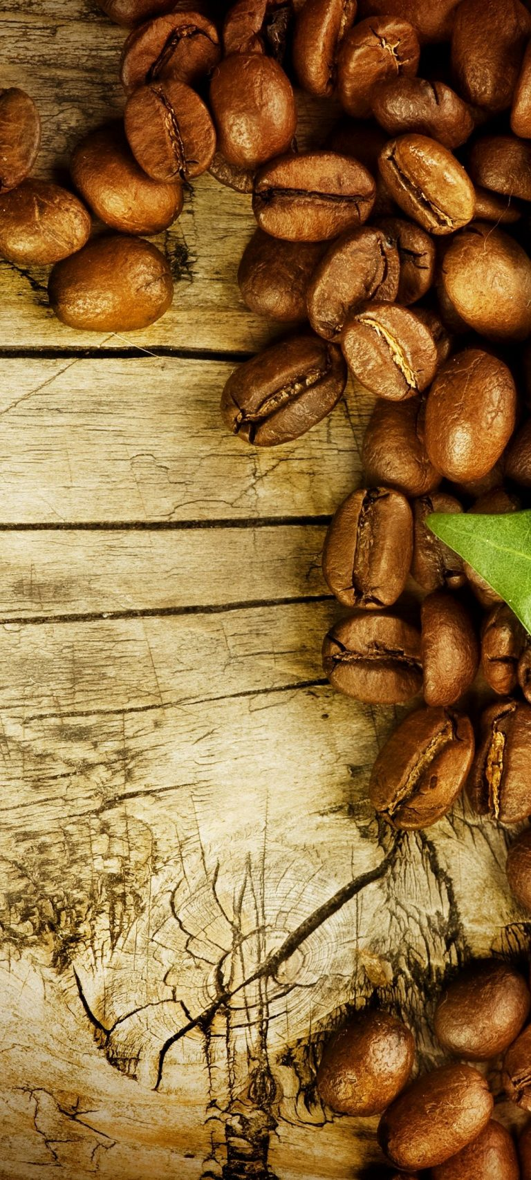 Coffee Grains Leaves Board 1080x2400 768x1707