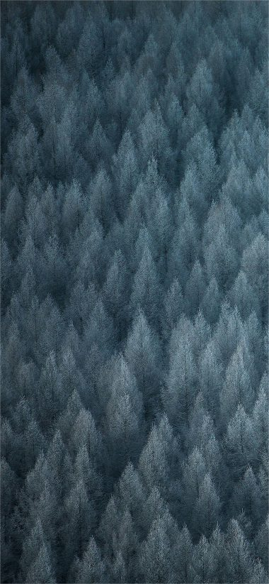 Color OS 6 Stock Wallpaper 11 1080x2340 380x823