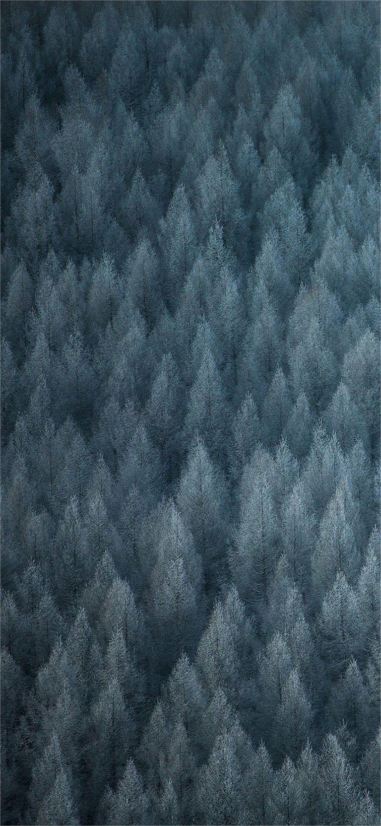 Color OS 6 Stock Wallpaper 11 1080x2340 768x1664