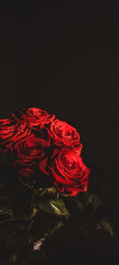 Dark Red Flowers Bouquet 1080x2400 380x844