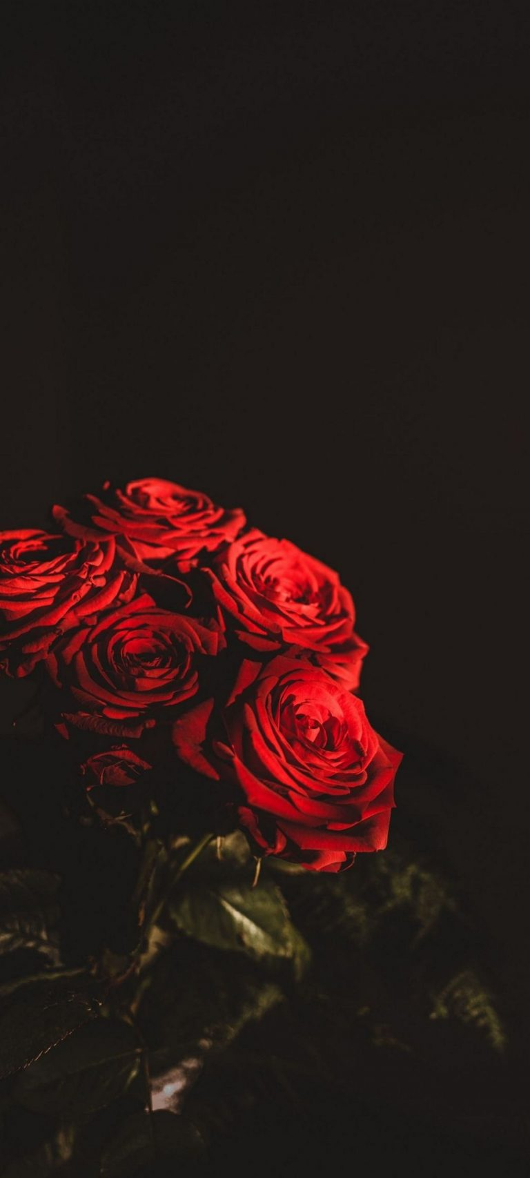 Dark Red Flowers Bouquet 1080x2400 768x1707